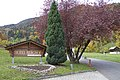 Wilderswil - panoramio - Patrick Nouhailler's… (68).jpg