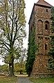 Linde-Winterlinde (Tilia cordata)