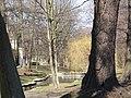 Wiosna wystartowała ,-)) 10 - panoramio.jpg