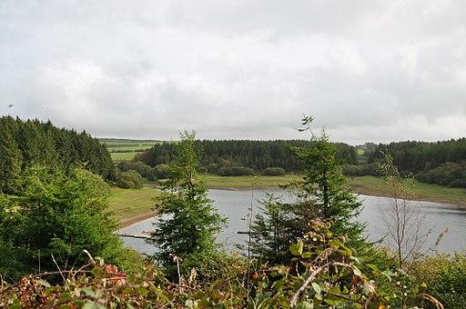 Wistlandpound Reservoir (1138)