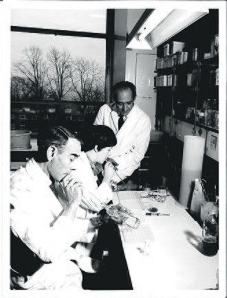 National Institute for Medical Research - Helio Pereira, the then-Director of the World Influenza Centre at NIMR Mill Hill, oversees flu virus research