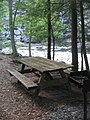 Worlds End State Park Picnic 3.jpg