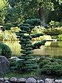 Wroclaw Ogrod Japonski 2.jpg
