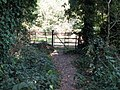 Wrought iron kissing gate near Findon Place - geograph.org.uk - 1511733.jpg