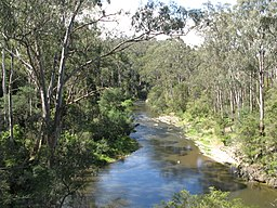 Yarra River Pound Bend.JPG