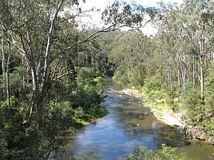 Yarra River - The Yarra River through Pound Bend near Warrandyte.