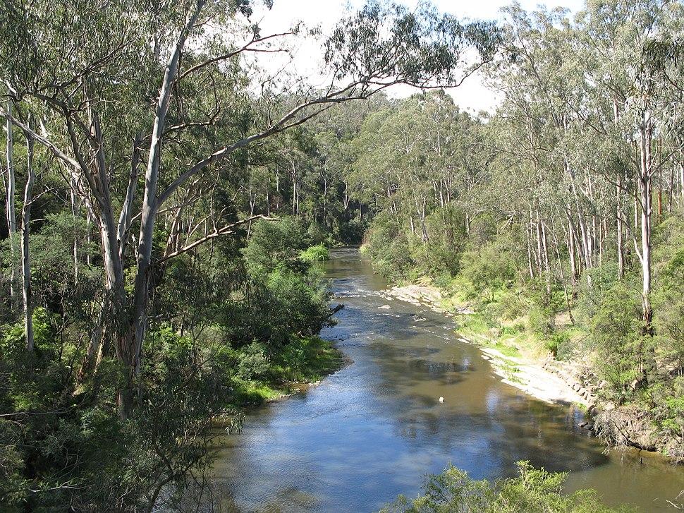Yarra River Pound Bend