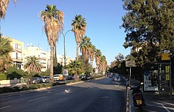 Yitzhak Sadeh Street ap 001.jpg