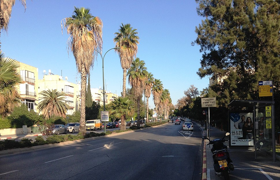 Yitzhak Sadeh Street ap 001