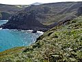 Zennor, Cornwall, UK - panoramio.jpg