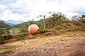 (2015-11-10) Visita à Bento Rodrigues-MG 061 Romerito Pontes (23407012309).jpg