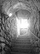 (Bodega Peñacoba, siglo XV Bar de tapas y restaurante) pic.bbb28.jpg
