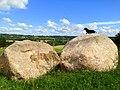 Šogad no zemes izvilktie akmeņi - panoramio.jpg