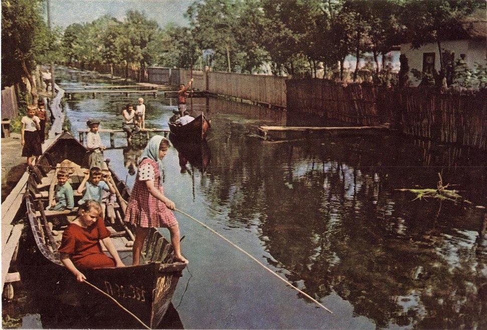 Вилково, Дунайские плавни 1962 г