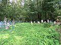 Грибово кладбище.jpg