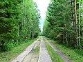 Дорога на заброшенную советскую военную базу (3) - panoramio.jpg