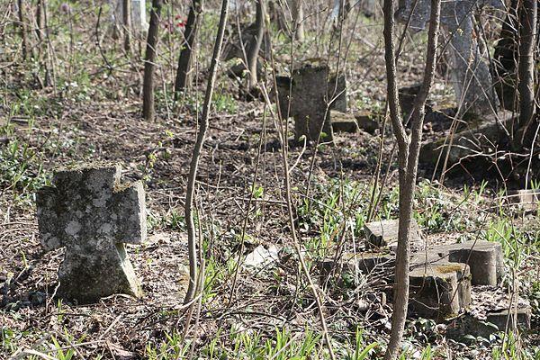 Кам'яні хрести с. Борщівка 2