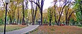 Маріїнський парк, панорама.jpg