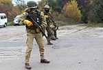 На Дніпропетровщині десантники вдосконалюють професійну майстерність під час бригадних тактичних навчань (29499754913).jpg
