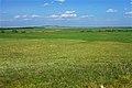 На горизонте горный массив Бишкаин - panoramio.jpg