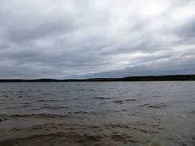 Вид с берега посёлка Пряжа