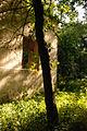 Парк-Немирів2.jpg