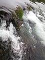 Парк природе Ријека Уна 98.jpg