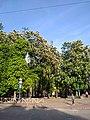 Парк імені Шевченко у місті Хмельницькому, 10.jpg