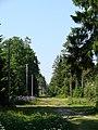Посёлок - panoramio (1).jpg
