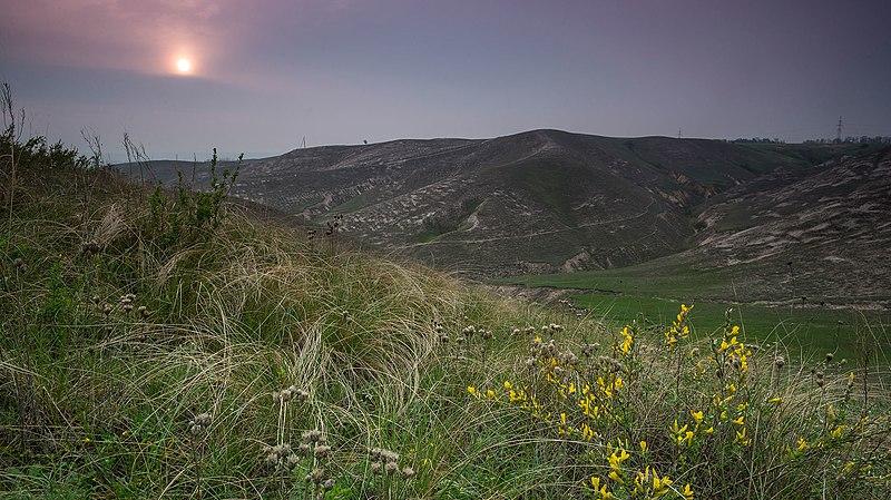 Краматорський регіональний ландшафтний парк. Автор фото — Konstantin Brizhnichenko (CC-BY-SA-4.0)