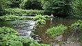 Река Дав - рай для рыбалки нахлыстом.jpg