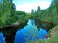 Река Шапша.jpg