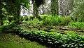 Рубенский парк Rubenes parks (5) - panoramio.jpg