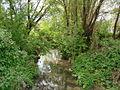Річка Совка.JPG