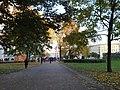 Сад с фонтаном у Зимнего дворца 8.JPG