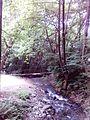 Смоларски водопад 19.jpg