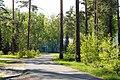 Южно-Сибирский ботанический сад 01.jpg