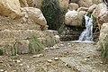 זרימת המים בשמורת עין גדי.jpg