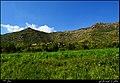 روستای نیزه بالا - panoramio (1).jpg