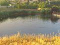 ناعورة الدهشة في الخريف.jpg