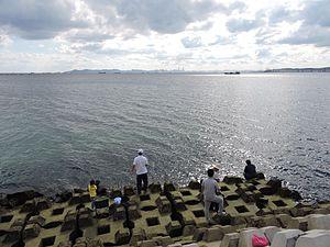 Dalian Bay - Dalian Bay