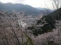富士川遠景(うつぶな公園) - panoramio (2).jpg