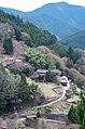 才谷から黒滝村の方角を見る 2014.4.12 - panoramio.jpg