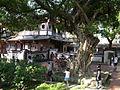 林本源園邸 (32).JPG