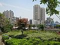 河滨公园正门口花园 - panoramio.jpg