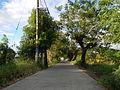 00014jfBulihan Bliss Alido Fields Roads Malolos City Bulacanfvf 14.JPG