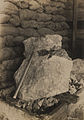 1200 lb nugget from Crown Reserve vein (HS85-10-19416).jpg