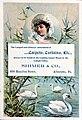 1882 - E S Shimer - Trade Card 1 - Allentown PA.jpg