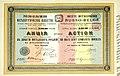 1911. Русско-бельгийское металлургическое общество. Акция в 250 рублей.jpg