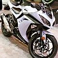 2013 Kawasaki Ninja 300 front Seattle Motorcycle Show.jpg